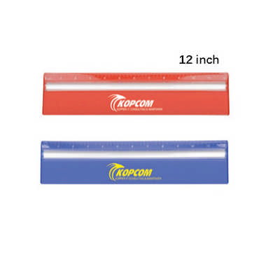 30cm Ruler With Colour And Magnifying DS256TL_DEX