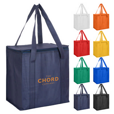 Non Woven Cooler Bag With Zipped Lid NWB016_DEX